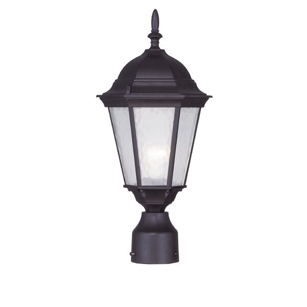 Busse Outdoor 1-Light Lantern Head by Darby Home Co