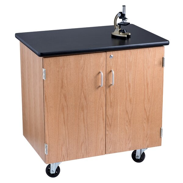 Mobile Science Lab Storage Cabinet Workstation by National Public Seating