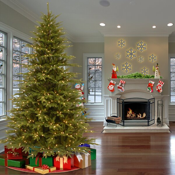 Feel Real Fraser Green Fir Trees Artificial Christmas Tree with 900 Incandescent Clear/White Lights by Gracie Oaks
