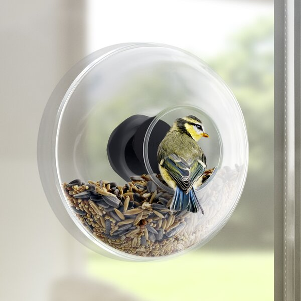 Window Decorative Bird Feeder by Eva Solo North America