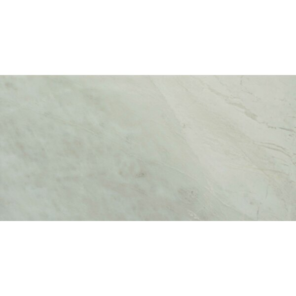 6 x 12 Marble Field Tile in White-Gray by Ephesus Stones