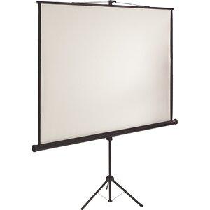 projektor leinw nde leinwandformat vollbild videoformat 4 3. Black Bedroom Furniture Sets. Home Design Ideas