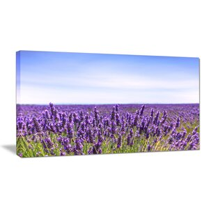 Close View of Lavender Flower Field Photographic Print on Wrapped Canvas by Design Art