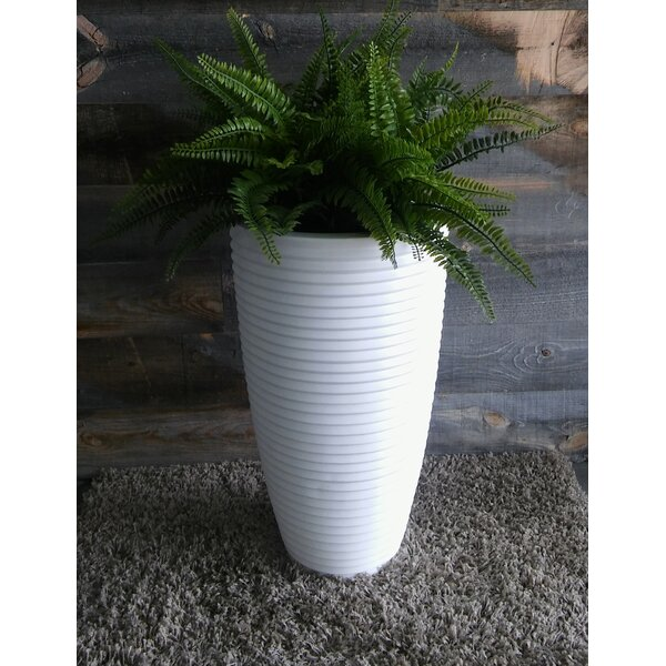 Hines Pot Planter by Wrought Studio