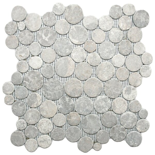 Desna Random Sized Natural Stone Mosaic Tile in Light Gray by CNK Tile