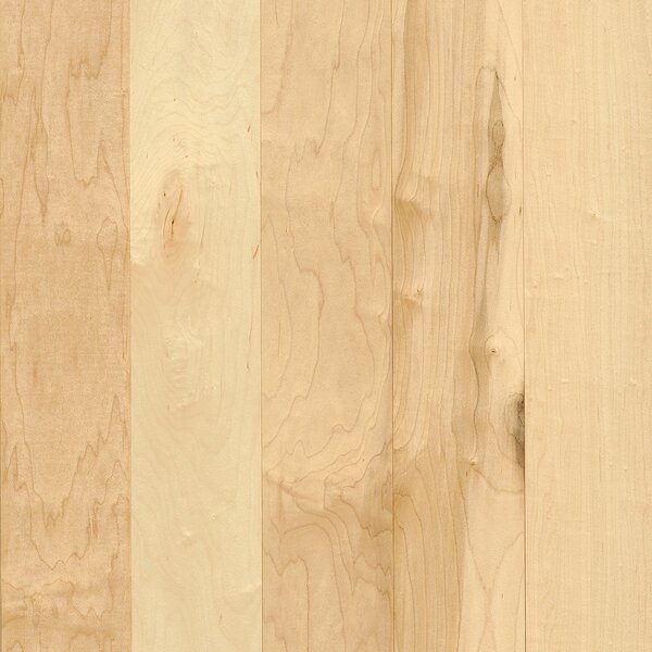 Prime Harvest 3-1/4 Solid Maple Hardwood Flooring in Natural by Armstrong Flooring