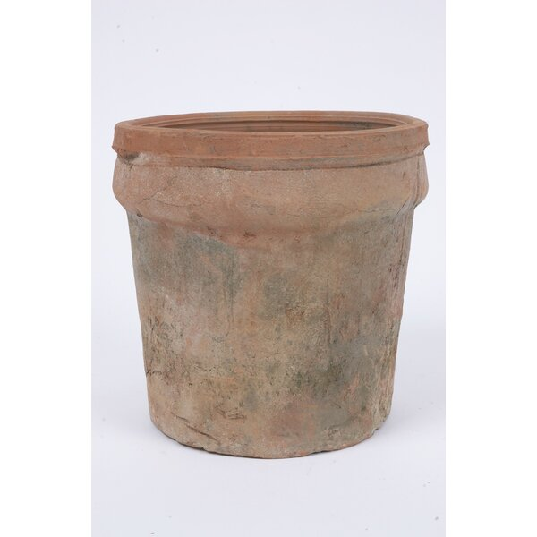 Engler Cylinder Concrete Pot Planter by Bloomsbury Market