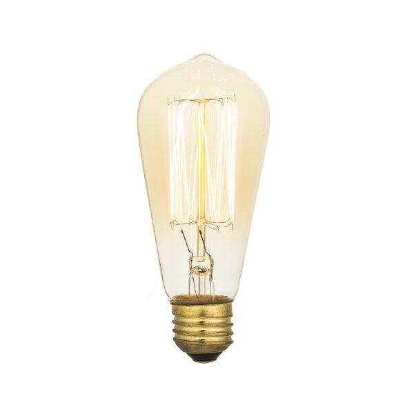 40W E26 Incandescent Vintage Filament Light Bulb by Aspen Brands