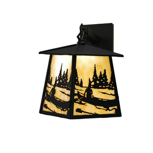 Find Canoe At Lake 1-Light Outdoor Wall Lantern By Meyda Tiffany