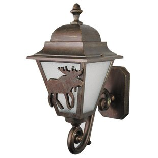 Online Reviews Penfield 1-Light Outdoor Sconce By Alcott Hill