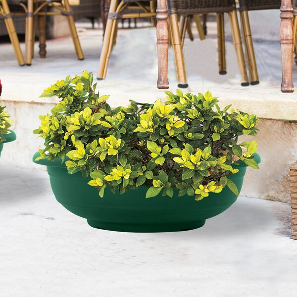Kineret Plastic Pot Planter by ALMI