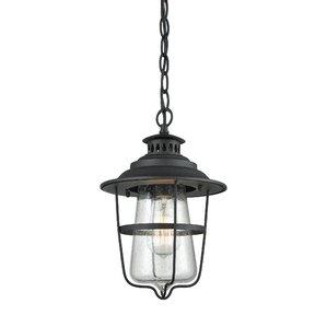 Roessler 1 Light Outdoor Hanging Lantern