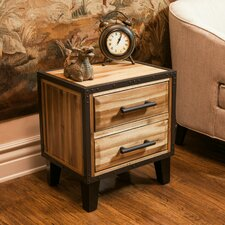 Kellan 2 Drawer Nightstand by Williston Forge