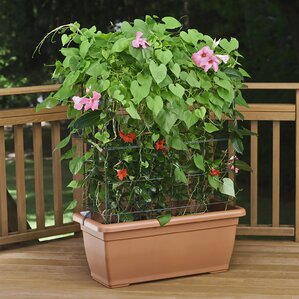 The most stylish and classic Self-Watering Planter Box with Trellis