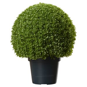 Faux Round Boxwood Topiary in Pot