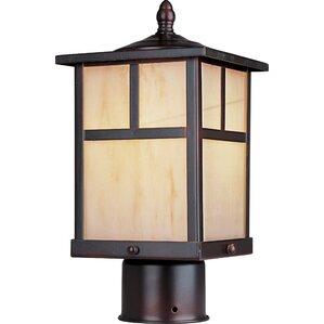 Maverick 1-Light Outdoor LED Lantern Head