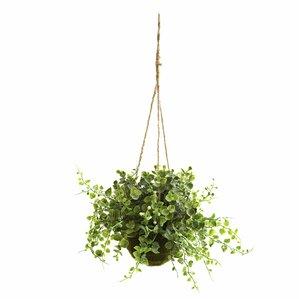 Faux Hanging Eucalyptus, Maiden Hair & Berry (Set of 3)