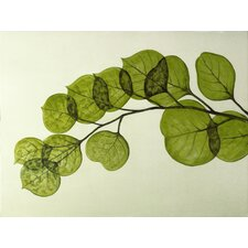 'Wall Décor Leaf' Graphic Art on Wrapped Canvas