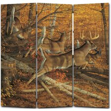 68 x 68 Maple Rush 3 Panel Room Divider by WGI-GALLERY