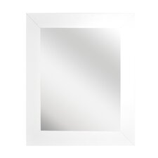 Modern Stainless Wall Mirror