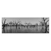 Artist Lane First Ripple by Andrew Brown Photographic Print on Canvas in Black