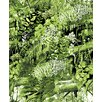 Vallila Horisontti 11m L x 530cm W Floral and Botanical Roll Wallpaper