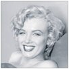 House Additions Marilyn Monroe Smile  Photographic Print Plaque