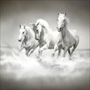 Pro-Art Glasbild White Horses, Kunstdruck