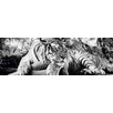NEXT! BY REINDERS Tiger Guckt Dich An Photographic Print