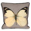 Mercury Row Asterope Cushion Cover