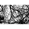 Marmont Hill 'Branches Entwined' Graphic Art Wrapped on Canvas