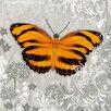 """DEInternationalGraphics Grafikdruck """"Orange Butterfly I"""" von Alan Hopfensperger"""