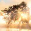 Pro-Art Light Yellow Trees Photographic Print on Canvas