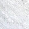 12'' x 12'' Marble Field Tile in Arabescato Carrara
