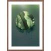 HoeiDenmark 'Botanic 1' Framed Photographic Print
