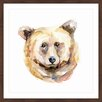 """Marmont Hill """"Bear Face"""" by Michelle Dujardin Framed Painting Print"""