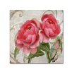 Trademark Fine Art 'Apricot Peonies I' by Color Bakery Graphic Art on Wrapped Canvas