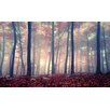 NEXT! BY REINDERS Autumn Forest Photographic Art Print