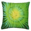House Additions Anemone Scatter Cushion