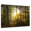 Bilderdepot24 Forest Clearing Framed Photographic Print on Canvas