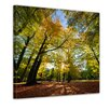 Bilderdepot24 Falling Leaves in Autumn Framed Photographic Print on Canvas
