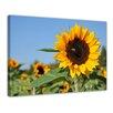 Bilderdepot24 Sunflower with Legs Framed Photographic Print