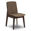 Langley Street Tahquitz Dining Chair (Set of 2)