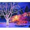 Snowtime Lichternetz 100-flammig