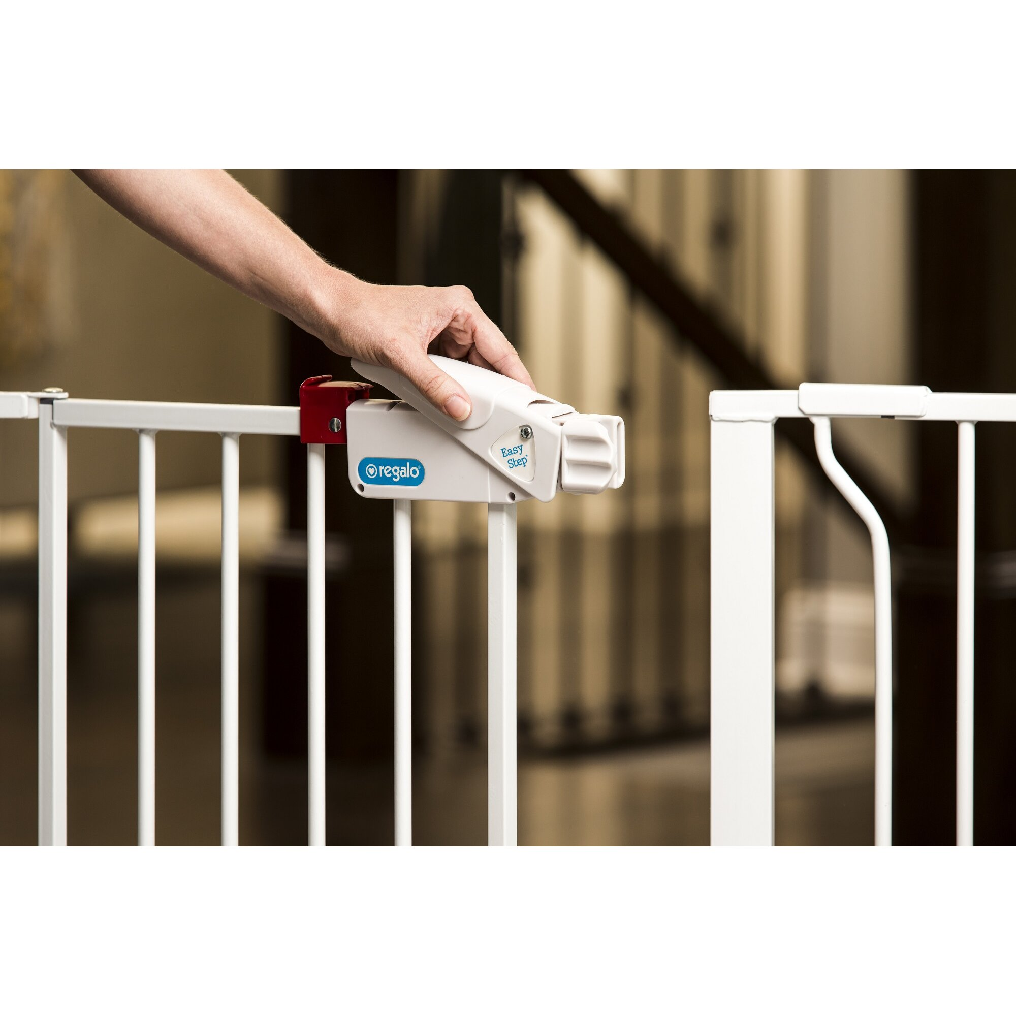 Regalo Extra Wide Span Gate Amp Reviews Wayfair