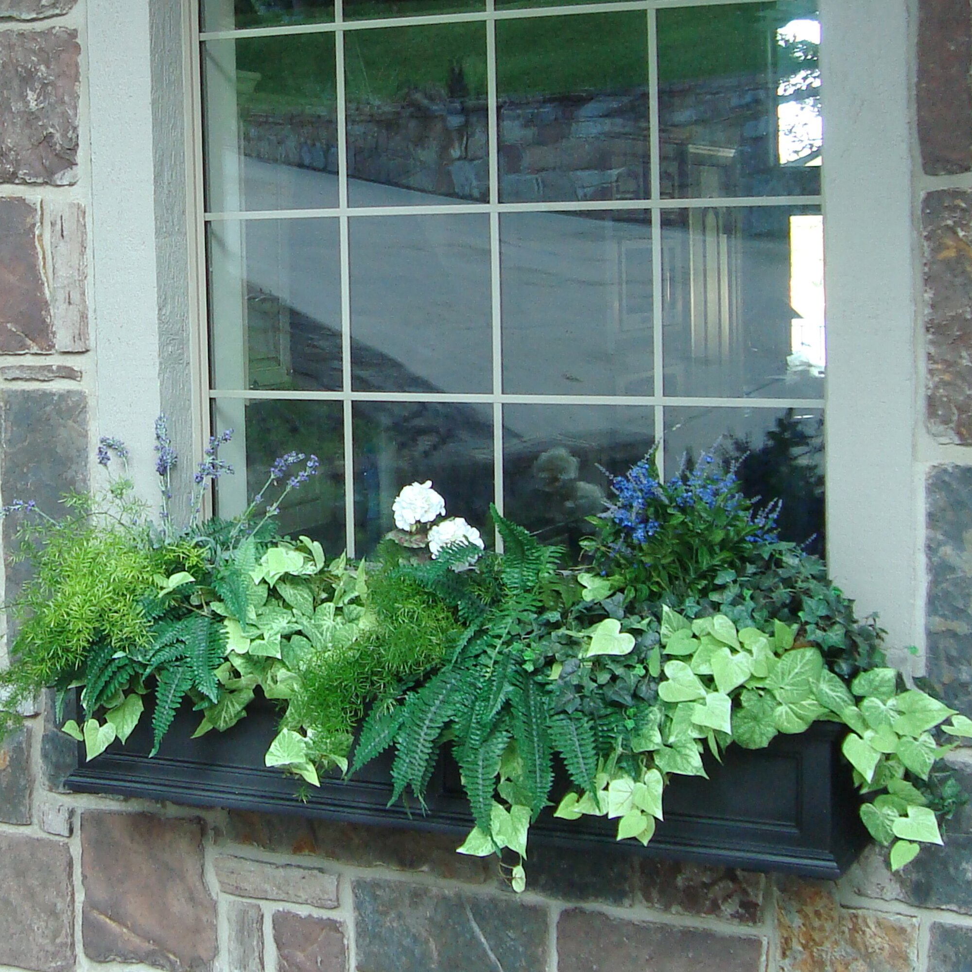 Mayne Inc Fairfield Self Watering Plastic Window Box