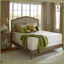 Botanical Bliss 10 Medium Firm Latex Mattress by Plush Beds