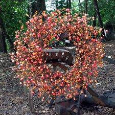 """24"""" Autumn Orange Berry Wreath"""
