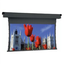 Dual Masking Electrol Grey Motorized Electric Projection Screen
