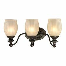 Park Ridge 3-Light Vanity Light